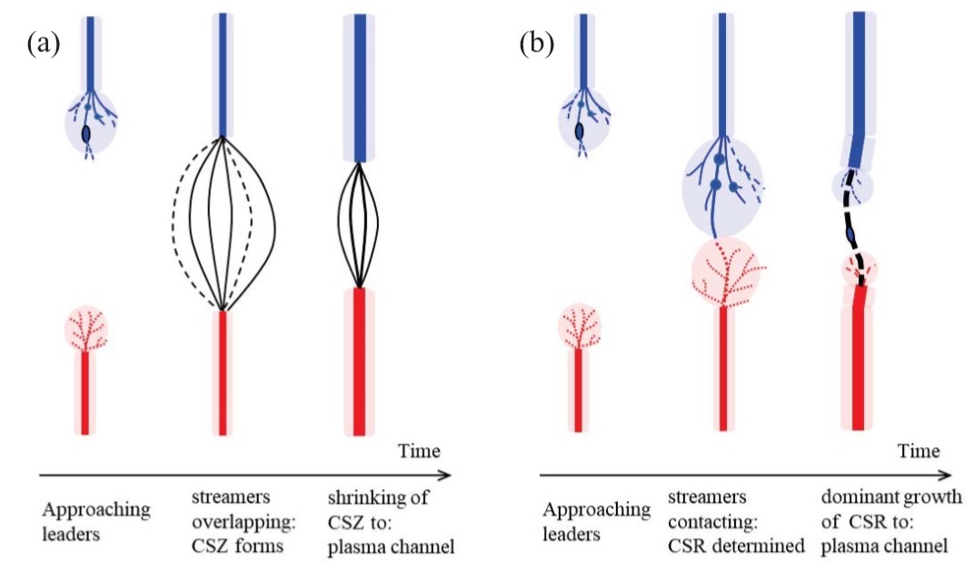 The graphic shows two possible scenarios for the connection of negative lightning leaders from a cloud (blue) and positive leaders from the ground (red) that sets the path for the lightning flash. Branching streamers burst from the tips of the leaders. Left, nearby streamers coalesce in a common streamer zone. Right, single streamers meet and expand in a common streamer zone, while the losers fade away.