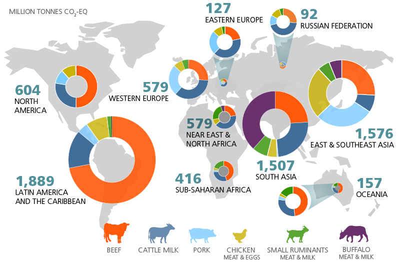 Livestock by region. Circular graphs indicate the scale of livestock farming in different world regions and the proportion contributed by beef cattle, dairy cattle, pigs, chickens, goats and sheep, and buffalo from the Global Livestock Environmental Assessment Model (GLEAM).